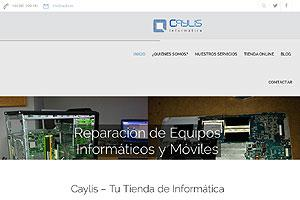 Caylis Informática