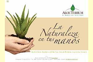 Aloe Terrum